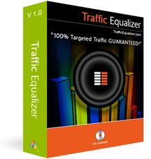 Traffic Equalizer - targeted web site traffic - guaranteed!